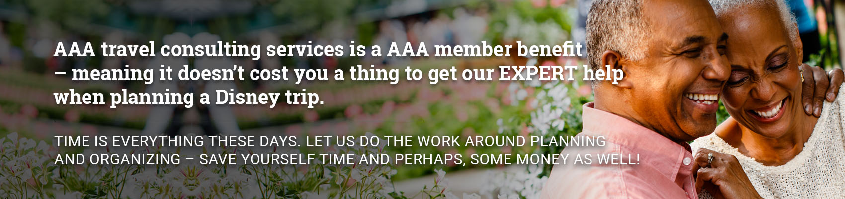 Travel consulting services is a AAA member benefit